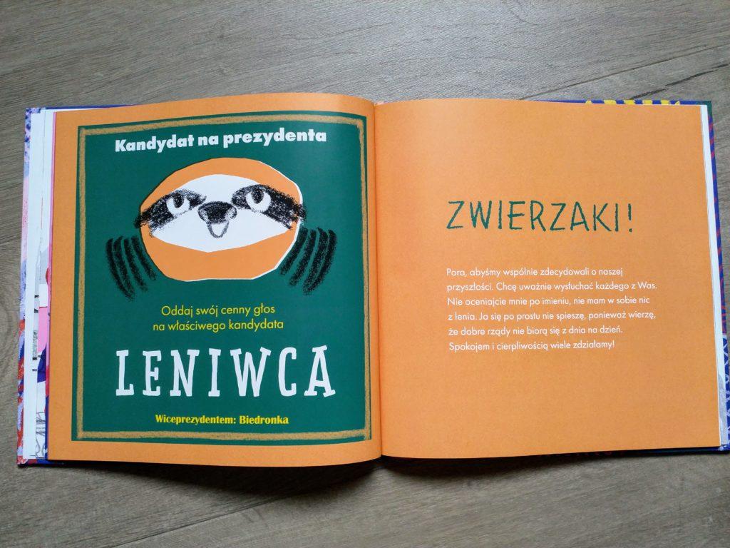 Kandydat - Leniwiec
