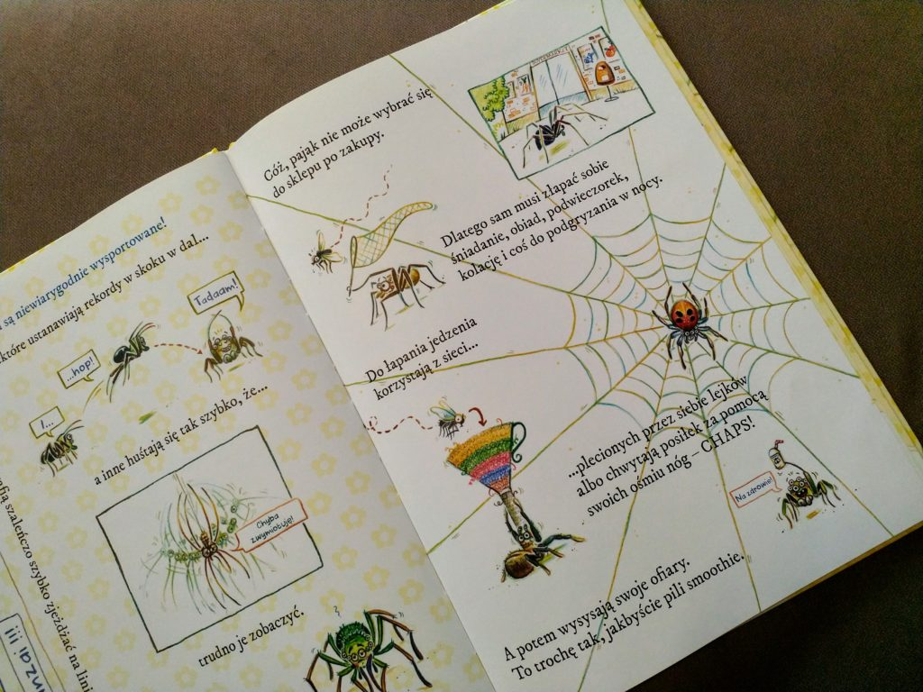 Uwaga pająki!