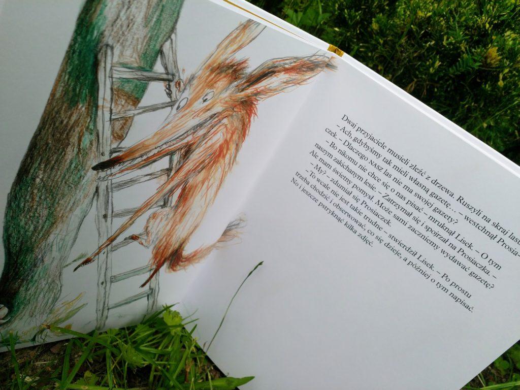 Leśna gazeta