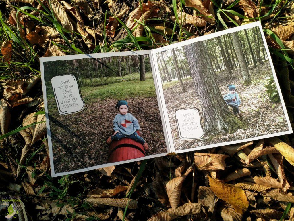Gabryś w lesie - recenzja serii