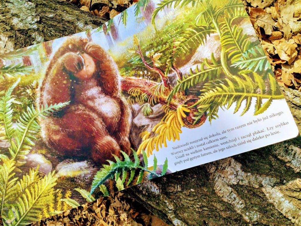 Niedźwiadek szuka przyjaciół