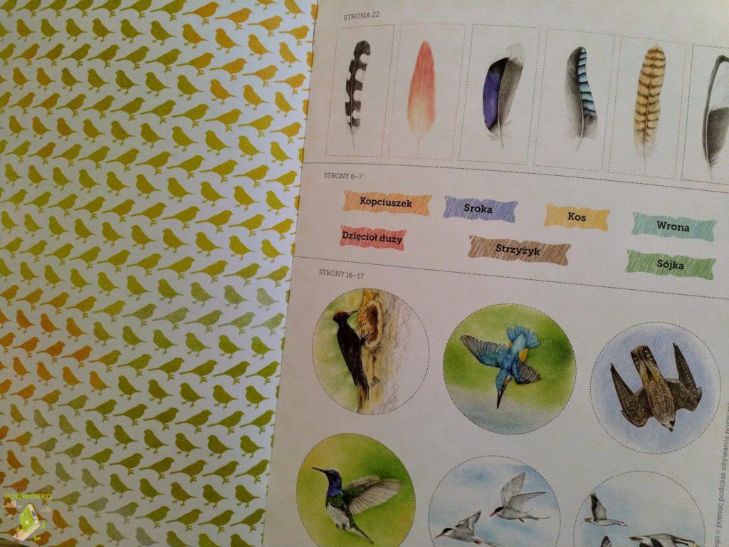 Ptaki. Mój zeszyt obserwacji przyrodniczych