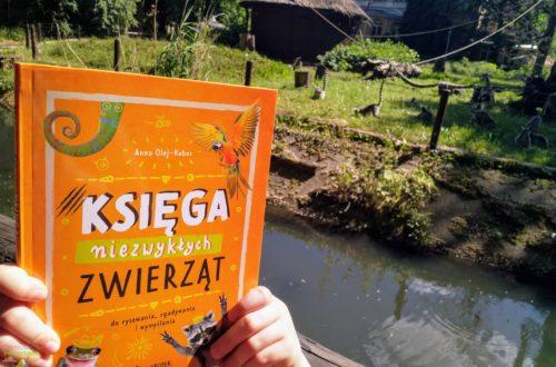 Księga niezwykłych zwierząt - do rysowania, zgadywania i wymyślania